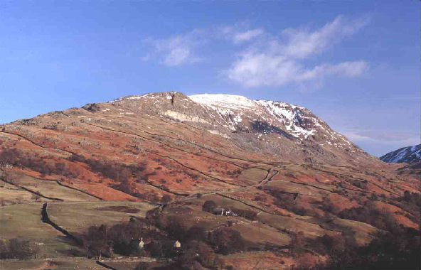 Red_Screes